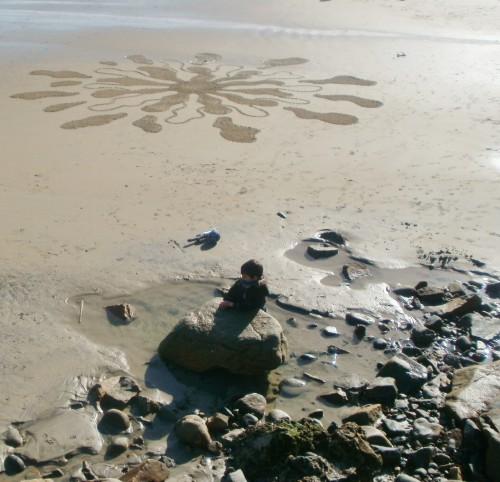 Patelgé, land art, rake art, beach art, dessin sable, art, perros-guirec, trestraou, bretagne, plage, dessins sur le sable, dent du lion, dent de lion, pissenlit