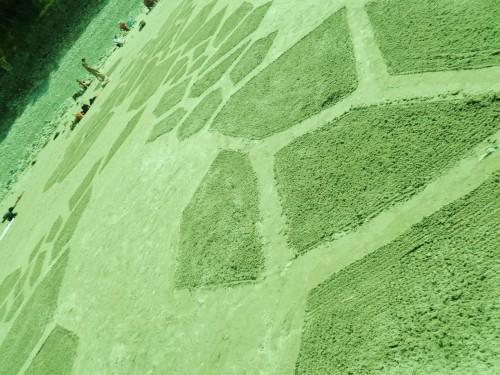 patelgé,land art,plage art,sable