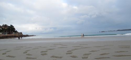 patelgé,land art,rake art,beach art,dessin sur le sable,dessin au rateau,sand art,trestrignel,bretagne,perros-guirec,art contemporain,art,côtes d'armor art, mOrse