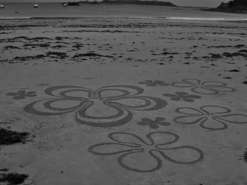land art,fleur de sable,patelgé,perros guirec,rake art,beach art
