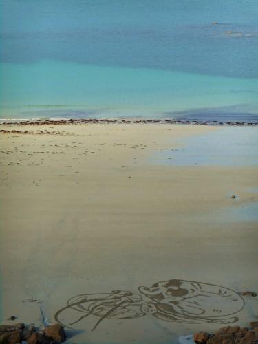 patelgé,perros guirec,land art,landart,beach art,plage art,sable, porz nevez, trestraou, bernard l'hermite, squatteur, bretagne