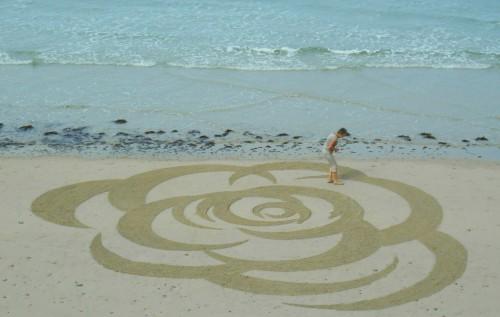 patelgé,land art,rake art,beach art,dessin sur le sable,dessin au rateau,sand art,trestrignel,bretagne,perros-guirec,art contemporain,art,côtes d'armor art, rosa rosam rosae