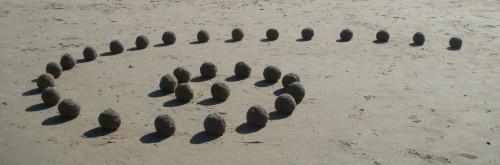 patelgé,land art,beach art,vegetal land art,vegetal art,perros-guirec,bretagne,trestraou,breizh,baies des sables,art,art contemporain,spirale spirale art,plage