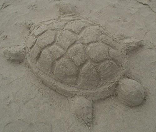 patelgé,perros guirec,land art,landart,beach art,plage art,sable, tortue, tortoise, chateau de sable, trestraou, perros-guirec