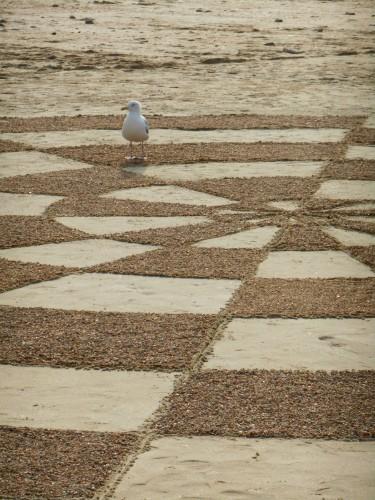 Patelgé, land art, beach art, rake art, dessins sur sable, festival de l'estran, Trégastel, 2014, art contemporain, art éphémère, granitoïdes