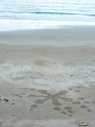 patelge,landart,perros,beachart,rakeart,ratisser,sable,art plage